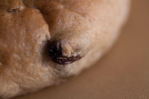 Cinnamon Raisin Bagel 3