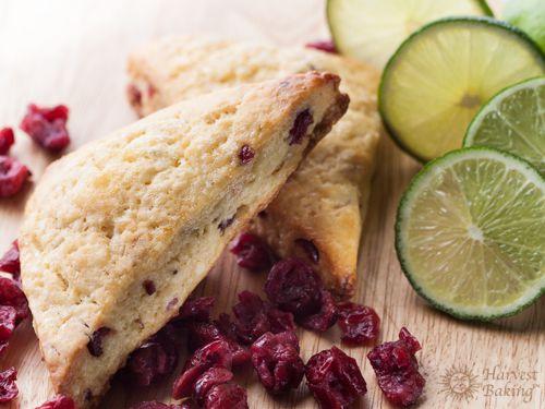 Cranberry Lemon Scones 1