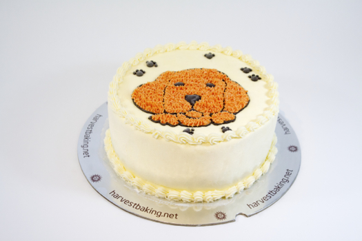 Specialty Cake: The Dog
