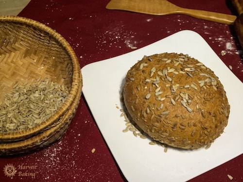 Organic Sunflower Bread